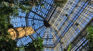 Großes Tropenhaus des Botanischen Gartens